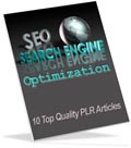SEO PLR articles